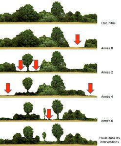 Plan de gestion des espaces naturels