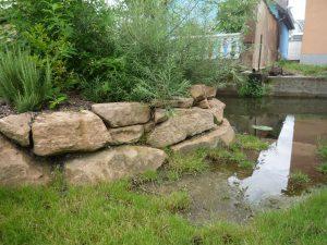 Le jardin Langert - Chemins de la Transition - Muttersholtz