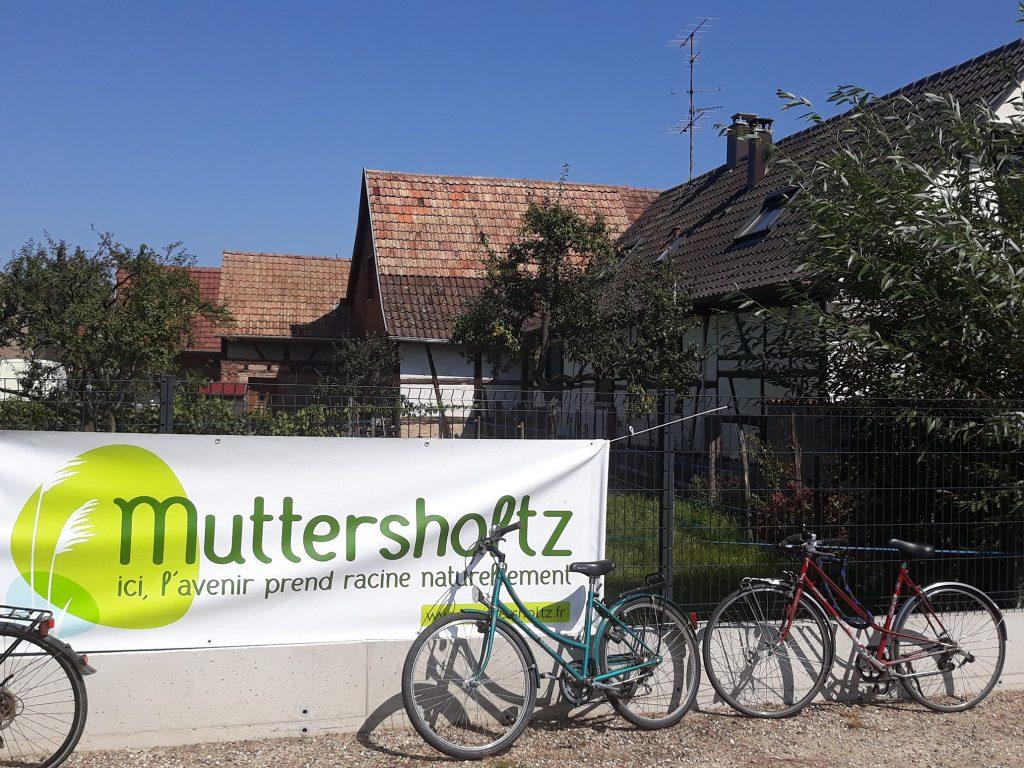 vélos à Muttersholtz