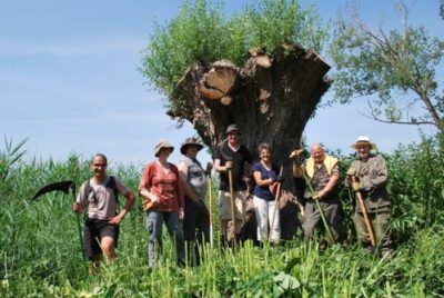 Chantier nature participatif